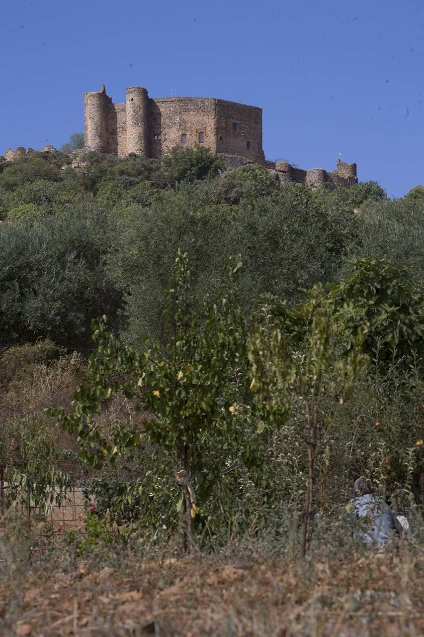 Salvatierra de los Barros - Castillo