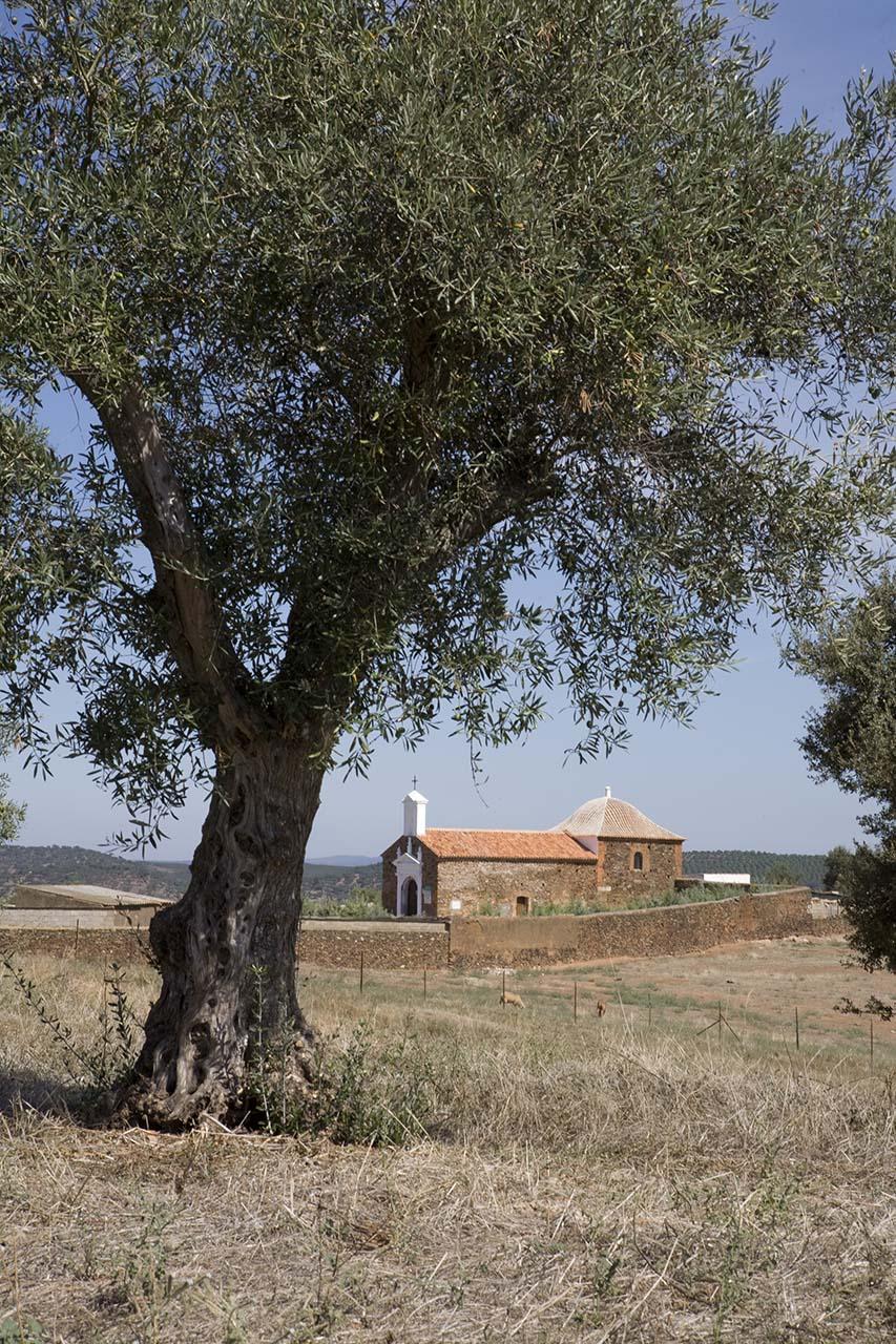 Valencia del Mombuey - Ermita 2